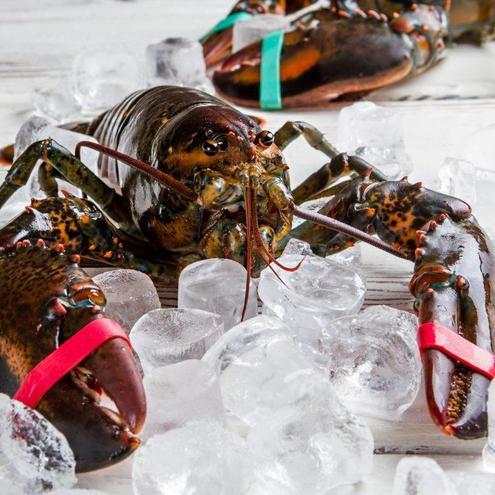 Sweet Potato Lobster Hash